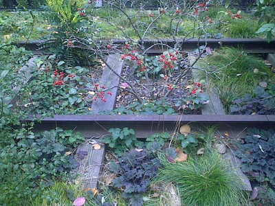 Old tracks on the Highline in NYC