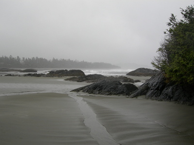 [IMAGE] Chesterman Beach