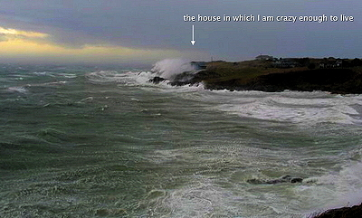 [IMAGE] home wet home